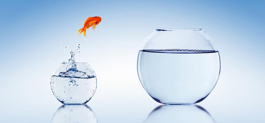Ser palestrante é trazer uma mudança na vida das pessoas